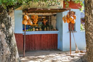 Fresh Fruit Snacks on hike route in rural Cuba